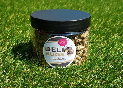 DeliBugs Krekels 25 gram