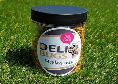 DeliBugs meelwormen 40 gram