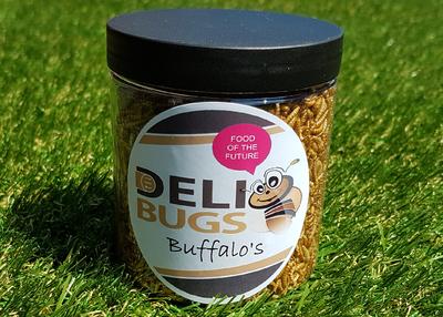 DeliBugs Bufallo's 40 gram