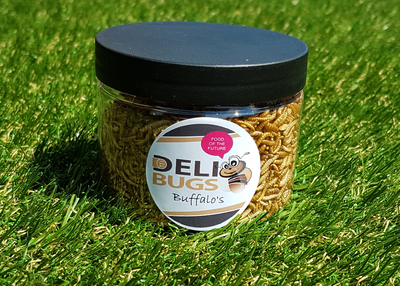 DeliBugs Bufallo's 25 gram