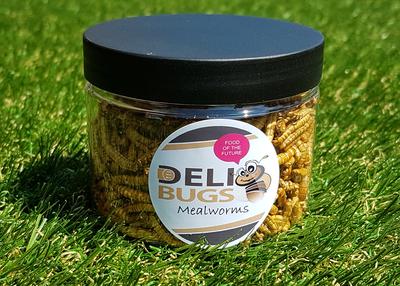 DeliBugs meelwormen 25 gram